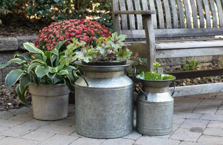How Long Do Galvanized Planters Last? (Simple Guide)