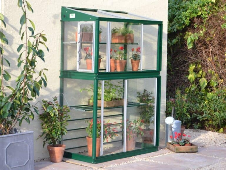 How Do You Start Seeds In a Mini Greenhouse?