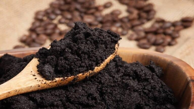 Are Coffee Grounds Good For Rosemary Plants?