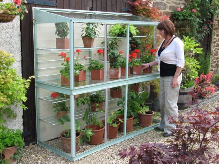 Do Mini Greenhouses Protect From Frost? (Essential Info)