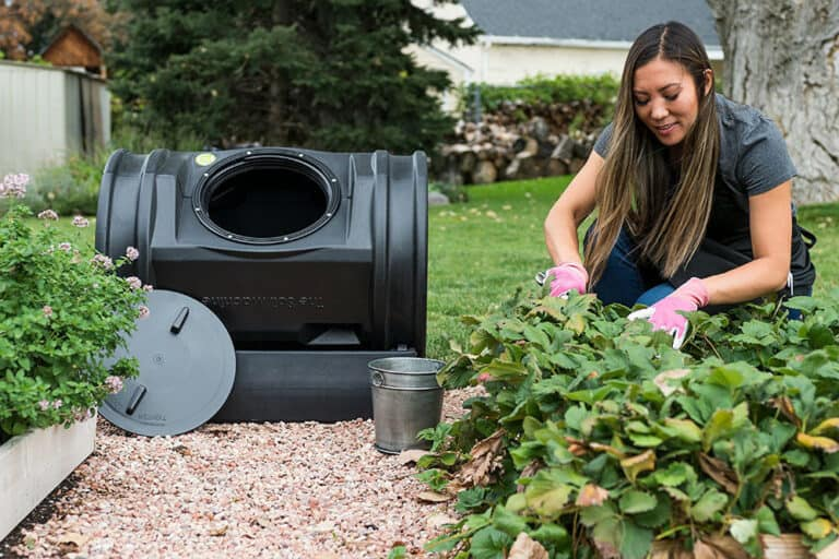 5 Best Composting Tumbler (Design and Reviews 2020)