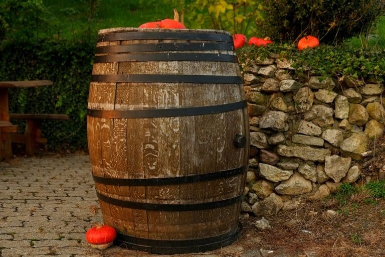 Best Trees for Wine Barrels (Complete Guide 2020)