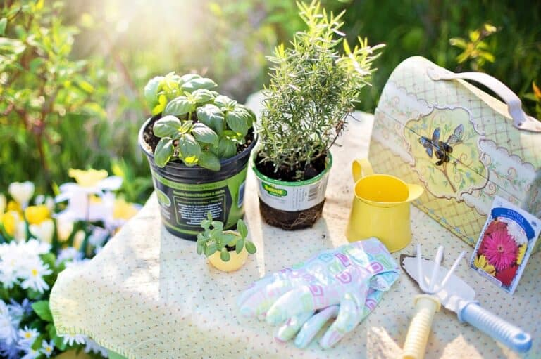 10 Gardening Tool Set For Mom (Top Rated 2020)