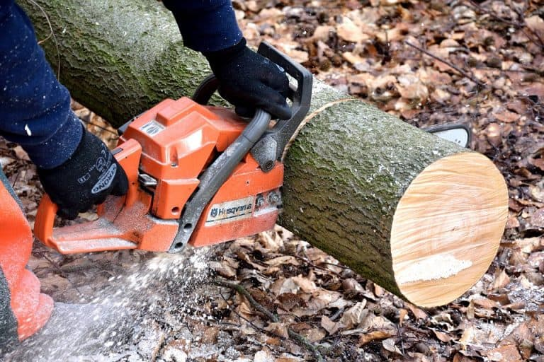 Corded vs Cordless Chainsaw: Differences And How to Use Them