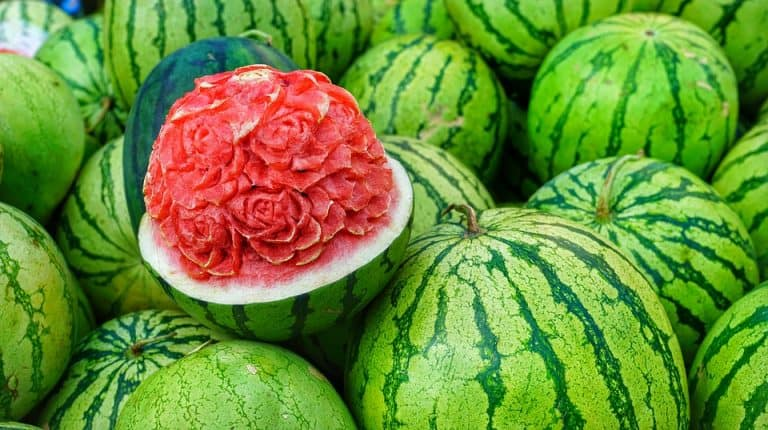 Is A Watermelon A Berry? (Or Vegetable | Classification)?