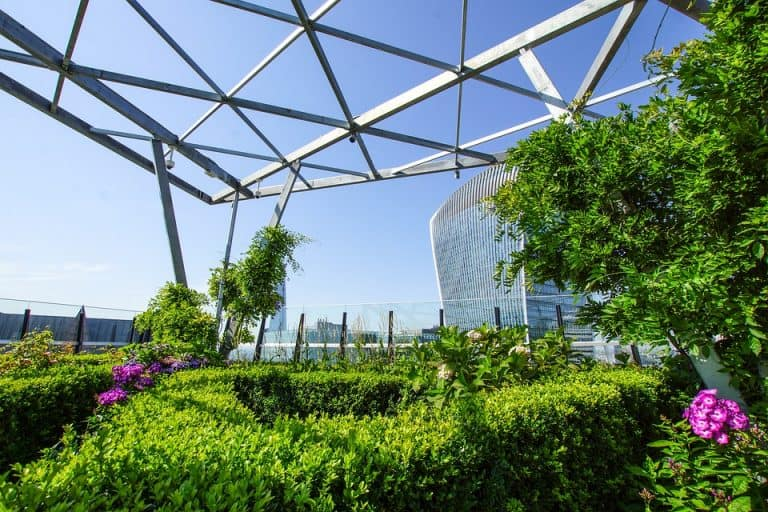 How Much Does A Rooftop Garden Cost? (Average Cost 2021)
