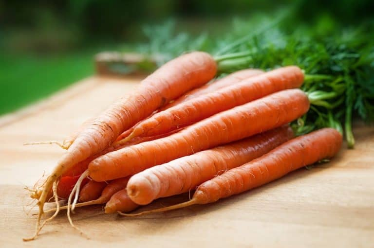 Are Carrots Cruciferous? (Everything You Should Know)