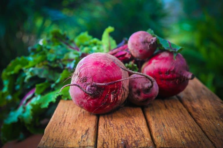 How To Grow Beets In Raised Beds [The Only Guide You'll Ever Need]