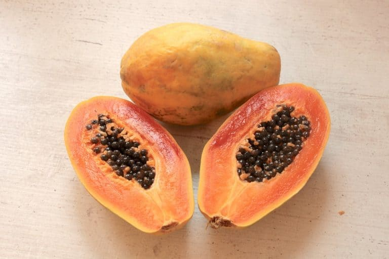 How To Plant Dry Papaya Seeds (A Complete Guide)