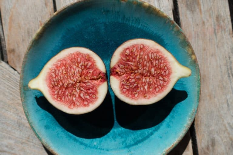 How to Grow a Fig Tree From Seed (A Complete Guide)
