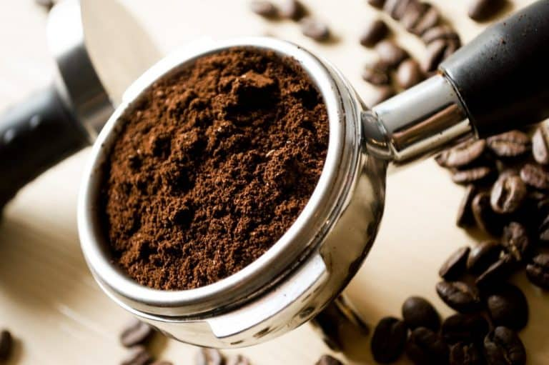 Are Coffee Grounds Good for Blueberry Plants (read this first)?
